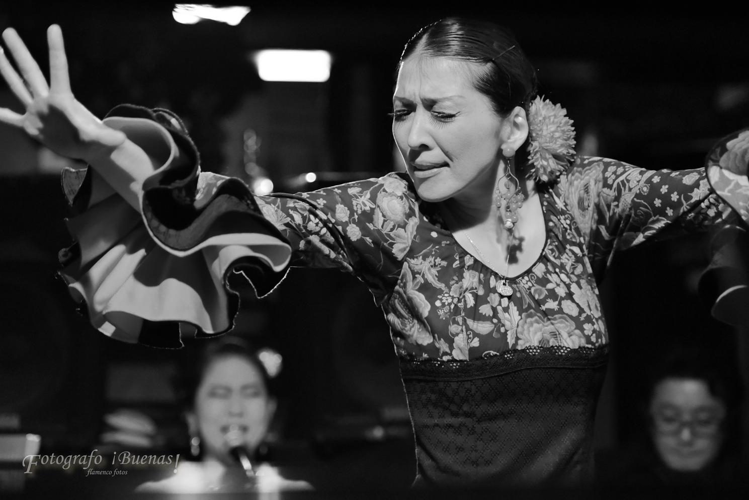 Yasuko Flamenco en LOS FAROLES  (2016/5/28)